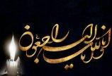 کام فوتبال تهران تلخ شد / گازگرفتگی بازیکنان امید استان تهرا...